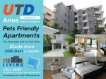 APARTMENT FOR RENT ON NUT SOI17 START 5500฿ - Rent Daily Weekly